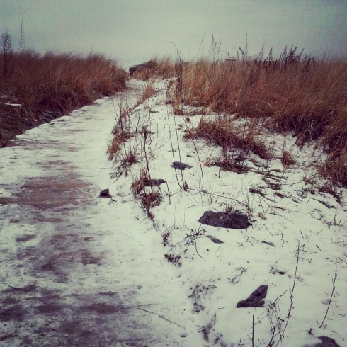snowy walkway to the beach